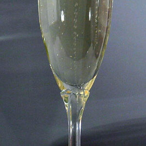 Water Dog Champagne Flute